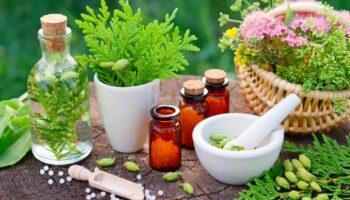 Virus Homeopathy Remedy PDF – Fixed